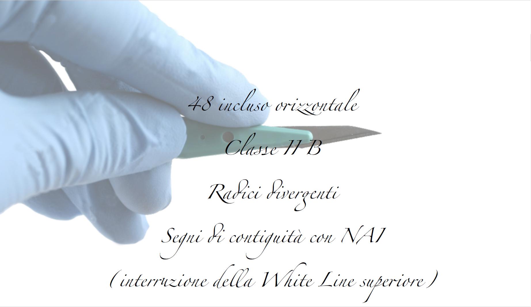 Dr. Andrea E. Borgonovo Foto 2