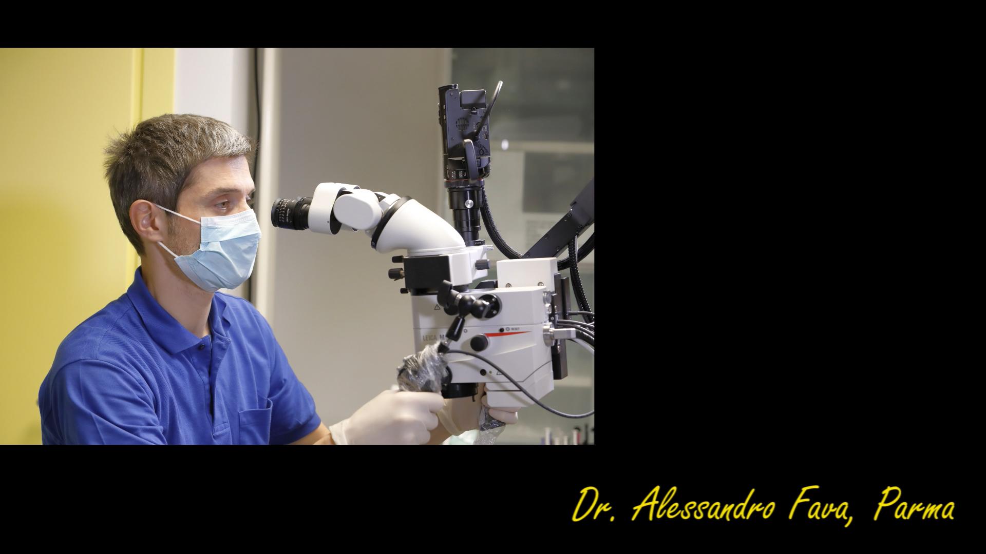 Dott Alessandro Fava
