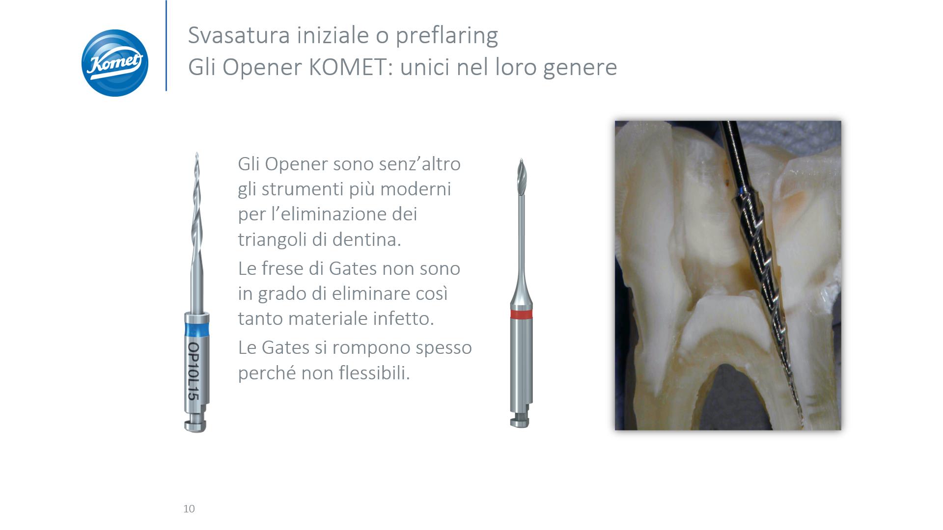 Procodile (1)
